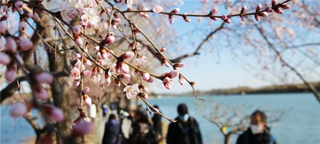 春暖花开户外活动增多 如何做好个人健康防护?户外活动10大建议