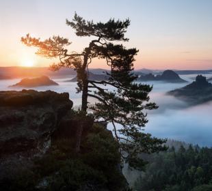 贵州省旅游专项奖励政策持续到年底 给予旅游企业每架次3万元奖励