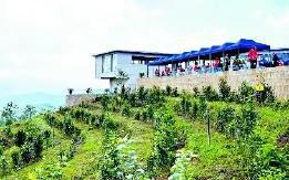 云南两个农村产融示范园获国家投资支持 全面推进乡村振兴